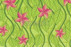 Link toFresh green vine background vector