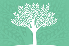 Link toFresh trees background vector