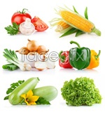 Link toFresh vegetables psd