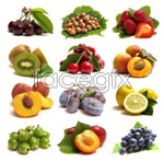 Fruit 04 psd