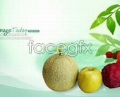 Fruit melon blue psd