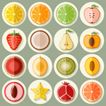Fruit slice icon vector