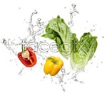 Link toFruits and vegetables, water droplets splash psd