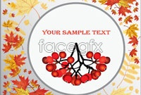 Link toFruits of autumn leaves two vector