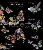Link toFun butterfly vector