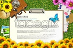 Link toFun holiday flyer 1 psd