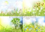 Link toGarden plants vector
