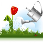 Link toGarden watering design vector graphics 03 free