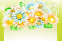 Gerbera text background cartoon vector