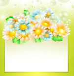 Gerbera text background vector