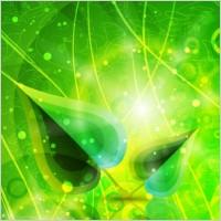 Link toGlare leaves background vector