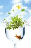 Link toGlass goldfish psd