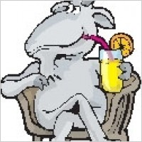 Link toGoat drinking lemonade