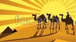 Link toGolden desert camel vector