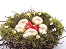 Link toGolden egg nest 04-hd pictures