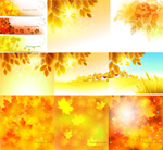 Link toGolden leaves of autumn vector