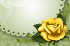 Link toGolden rose decorative borders vector