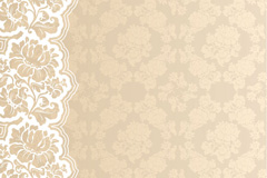 Link toGorgeous lace background vector
