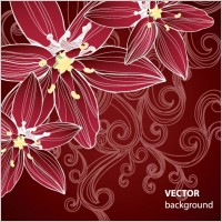 Link toGorgeous pattern background 05 vector