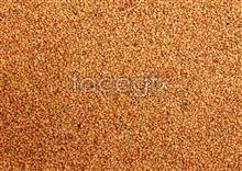 42 Grain