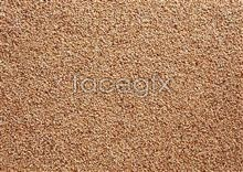 Link to53 Grains