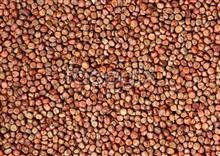 Link to82 Grains