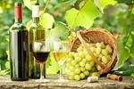 Link toGrape and wine 01 psd