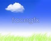Link toGrass blue sky background psd