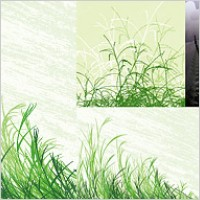 Link toGrass material vector