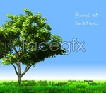 Link toGrass tree vector