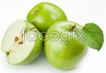 Link toGreen apple 01 psd
