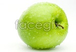 Link toGreen apple 03 psd