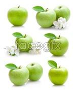 Link toGreen apple 04 psd