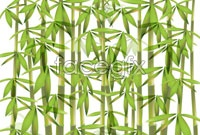 Link toGreen bamboo background vector