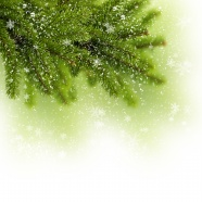 Link toGreen christmas trees background pictures