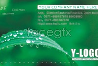 Link toGreen cool business card template vector