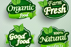 Link toGreen food label design vector