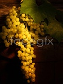 Link toGreen grapes pictures psd