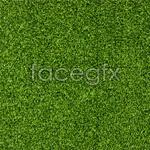 Link toGreen grass 2 psd