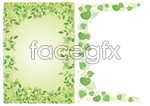 Green lace vector