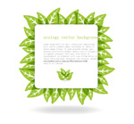 Link toGreen leaf border text background vector
