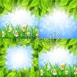 Link toGreen leaf chamomile vector