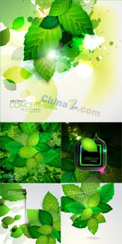 Link toGreen leaf design vector