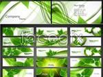 Link toGreen leaf leaves vector
