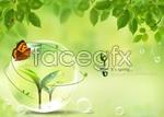 Link toGreen leaf life psd