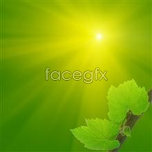 Link topicture material leaf Green