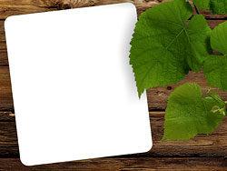 Link toGreen leaf wood background 04-hd pictures