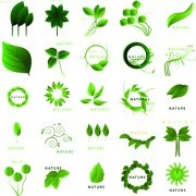 Link toGreen leaves logos creative vector
