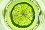 Link toGreen lemon slices 1 psd