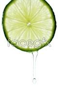 Link toGreen lemon slices 2 psd